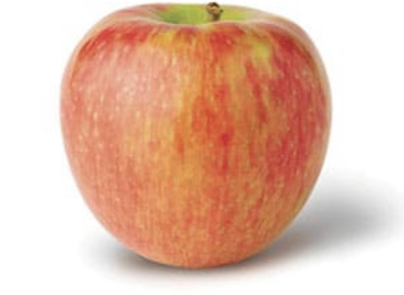 Apples Honey Crisp