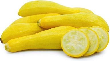 Squash Yellow